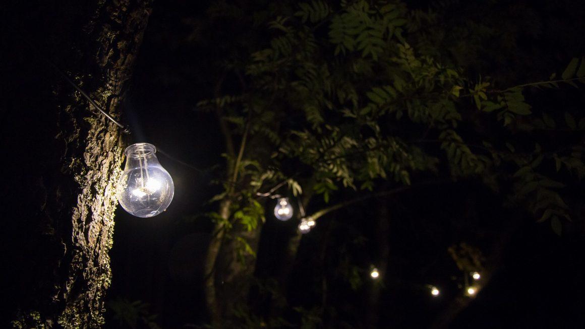 lumière jardin