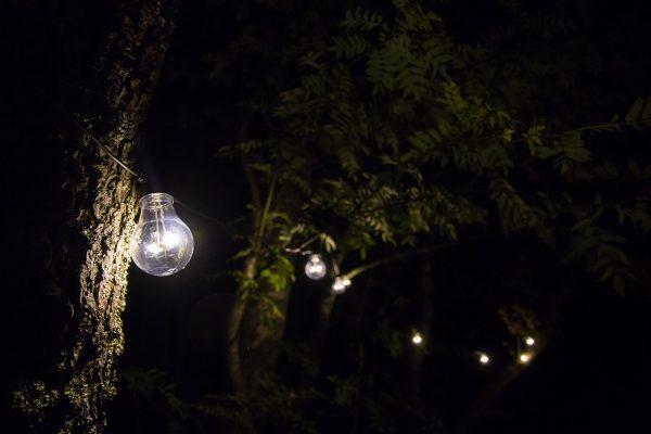 Comment amener de la lumière au jardin ?